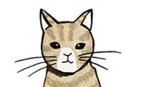 猫控福音!玩这些游戏可以尽情吸猫了……